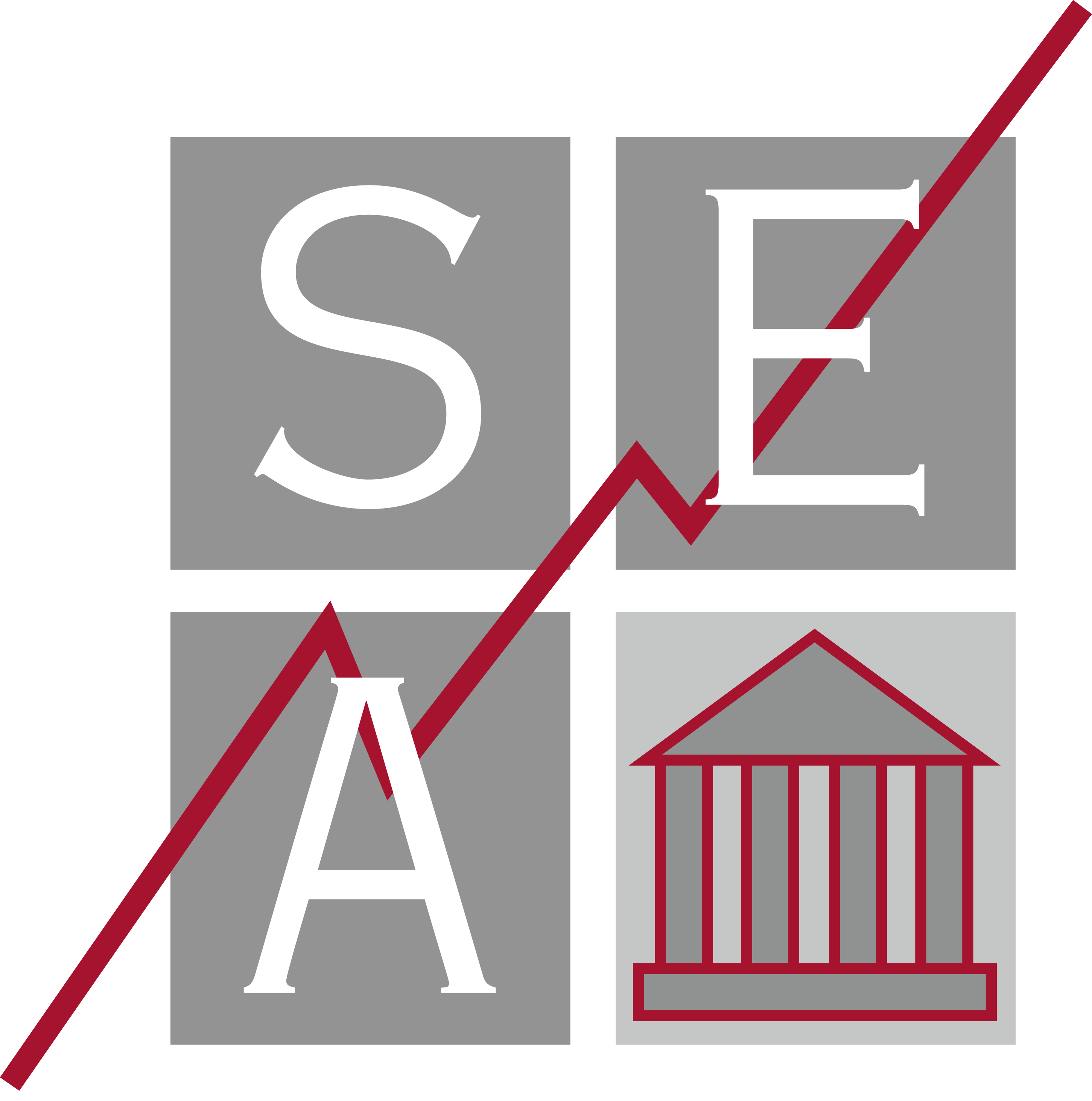 SEA - Gestion de portefeuille, gestion de patrimoine et courtage d'assurance - Lorraine - Nancy - Metz - Epinal